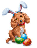 Easter dog Stock Images