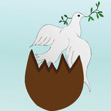 Easter dove Royalty Free Stock Photos