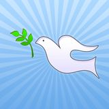 Easter dove with green leaf Stock Images