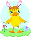 Easter Duck with Pink Ears Stock Photos