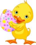 Easter duckling stock illustration