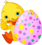 Easter Duckling gives thumbs up Royalty Free Stock Photo
