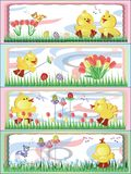 Easter, ducklings Royalty Free Stock Photos