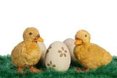 Easter ducklings Royalty Free Stock Image