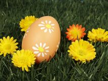 Easter egg. On grass with blossoms Royalty Free Stock Photo