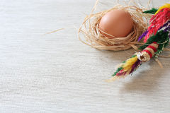 Easter egg. Egg in the nest with palm Royalty Free Stock Photography