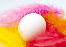 Easter egg. Single white egg surrounded by some colorful feathers Royalty Free Stock Image