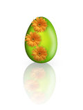 Easter egg. Green easter egg with flowers Stock Photography