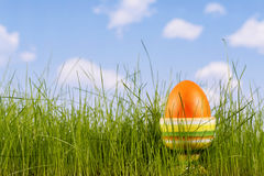 Easter-egg Stock Images