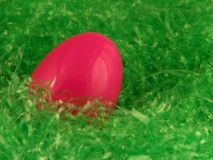 Easter Egg. Pink Easter Egg in Basket Royalty Free Stock Photo