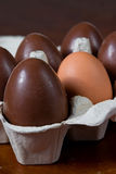 Easter Egg. An normal egg in the middle of easter eggs royalty free stock photo