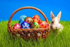 Easter Egg And Bunny In Basket Stock Images