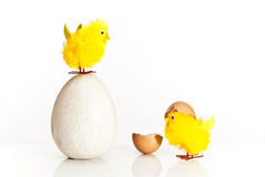 Free Easter Egg And Chickens Royalty Free Stock Image - 13407526