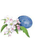 Easter Egg and Apple Blossom. Stock Images