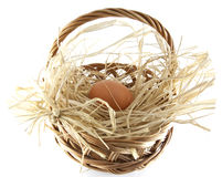 Easter egg in the basket Royalty Free Stock Photos
