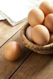 Easter egg in a basket Stock Images