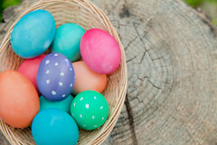 Easter egg basket on a stump Royalty Free Stock Image