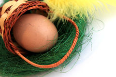 Easter egg in basket with yellow feather Royalty Free Stock Photos
