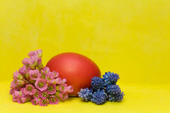Easter egg with bergenia and hyacinth Stock Photos