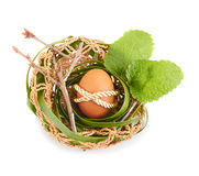 Easter Egg in a bird nest Stock Images