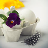 Easter egg in birds nest with spring flowers Royalty Free Stock Photo