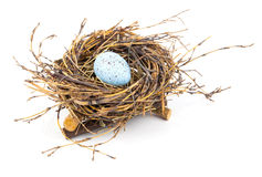 Easter egg in birds nest Royalty Free Stock Image