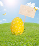 Easter egg with blank board. On spring meadow royalty free stock image