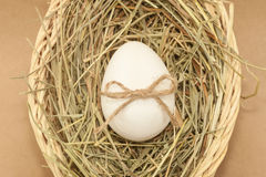Easter egg with bowknot in basket Stock Photos