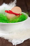Easter egg in a bowl Royalty Free Stock Images