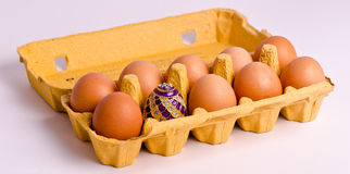 Easter egg in in box. Open carton or box of fresh eggs with decorative eater one, studio background stock image