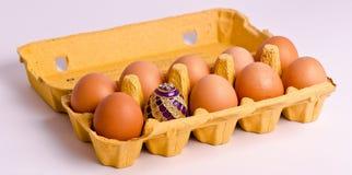 Easter egg in in box Stock Image