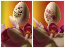 Easter egg with butterfly, flower - collage Royalty Free Stock Images