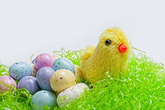 Easter egg candy,chick Royalty Free Stock Photos