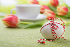 Easter egg with checked ord on spring green-orange background wi Stock Images