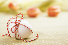 Easter egg with checked red-white cord on spring background Royalty Free Stock Images