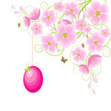 Easter egg and cherry blossoms. Royalty Free Stock Photography