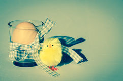 Easter egg and chicken decoration Stock Photography