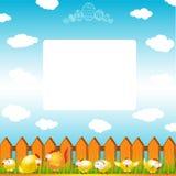 Easter egg chicken hen color background Stock Images
