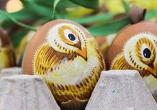 easter egg chicken painting art Royalty Free Stock Images