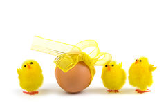 Easter egg and chickens Royalty Free Stock Images
