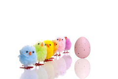 Easter egg and chicks diagonal line Royalty Free Stock Photos