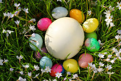 Easter Egg Circle Stock Images