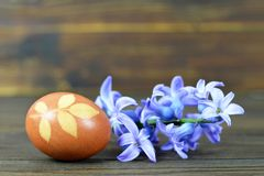 Easter egg colored with onion. Easter egg and spring flowers. Easter egg colored with onion. Brown Easter egg and spring flowers royalty free stock photography