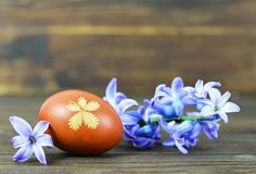 Easter egg colored with onion. Easter egg and spring flowers. Easter egg colored with onion peel. Easter egg and spring flowers royalty free stock images