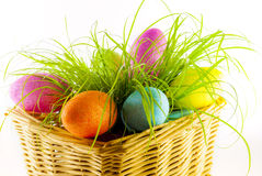 Easter egg. Coloured easter egg in the grass on white background royalty free stock images