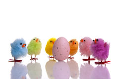 Easter egg with colourful chicks around Royalty Free Stock Photography