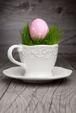 Easter egg in a cup Stock Image
