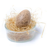 Easter egg cup on white background Royalty Free Stock Image