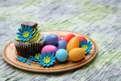 Easter egg cupcake Stock Photos