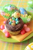Easter egg cupcakes Stock Image